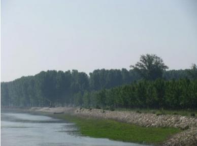 Укрепване брега на р. Дунав зана 1